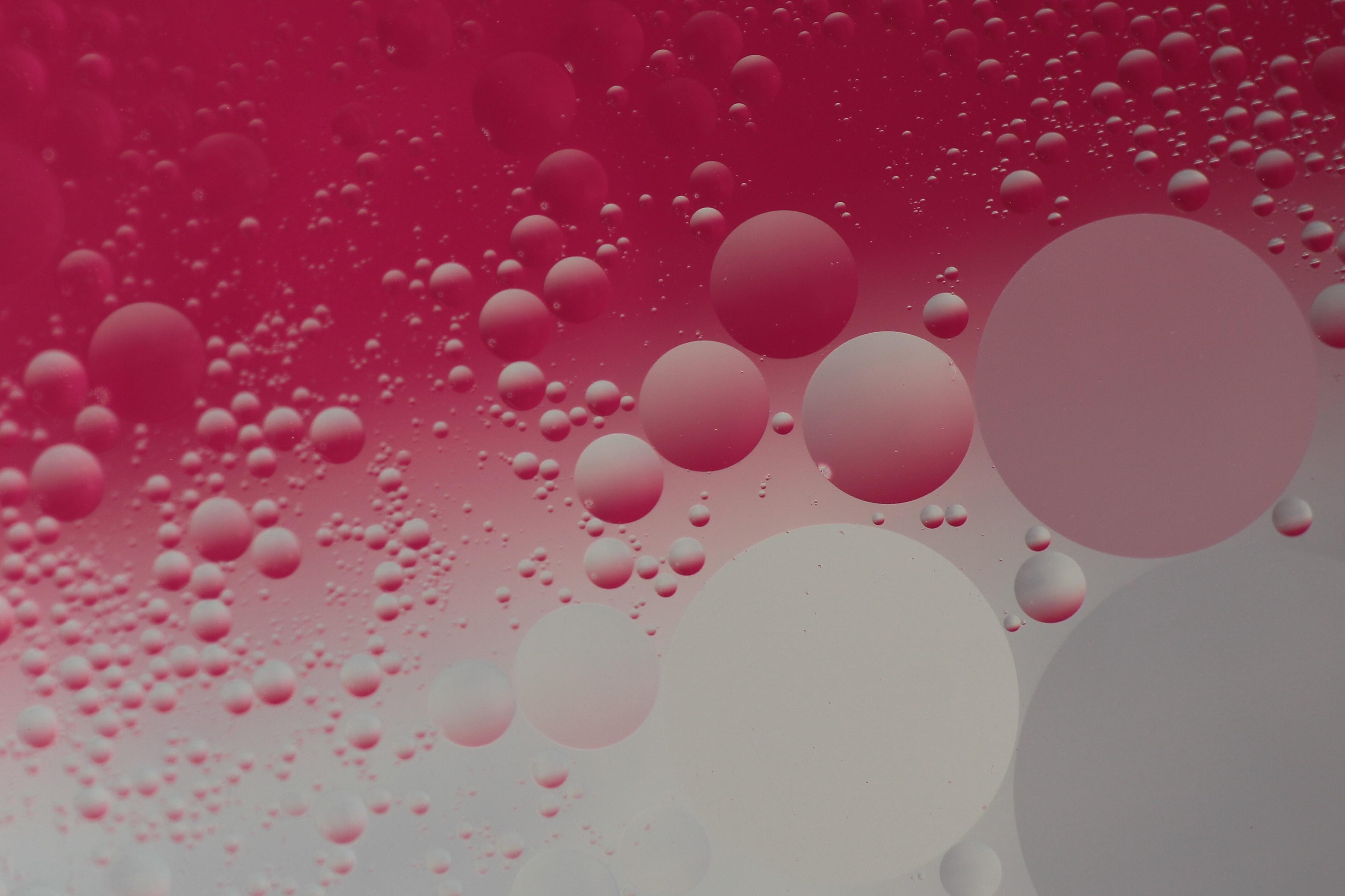 Plaatje 3 blog programmamanger en ontwerper - roze