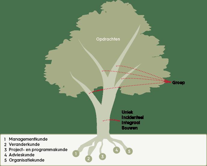 organisatiekunde-de-boom-methode