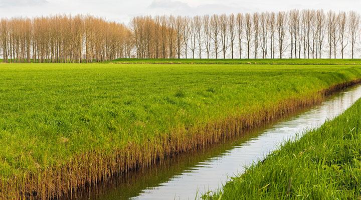Verkennen van bestuurlijke keuzes voor klimaatadaptatie
