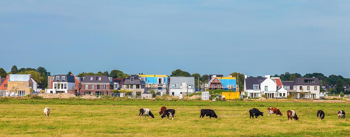 Betrouwbaarheid van grondexploitatie verbeteren